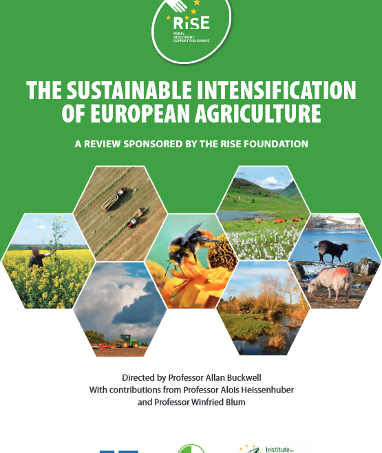 The Sustainable Intensification of European Agriculture