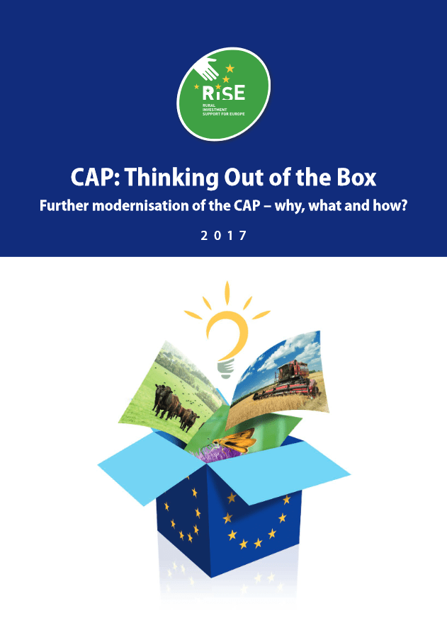 'CAP: thinking out of the box' report