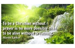 Faith Martin Luther