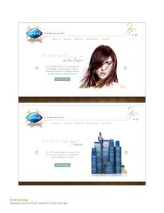 MARKETING PLANS BY RISE DESIGN EXAMPLES_Page_05