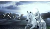 """Dijuluki """"Pembebas Mesir"""", Dialah Penghalang Terdepan Hijrah Muslim ke Habasyah"""