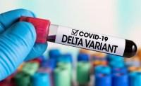 Ternyata ini Alasan Virus Covid-19 Varian Delta Gampang Menular
