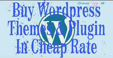 buy wordpress theme and plugin