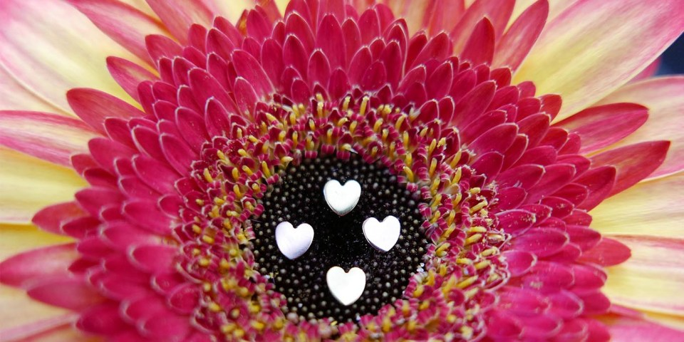 dermalanchorheart_heartpiercing_informatie