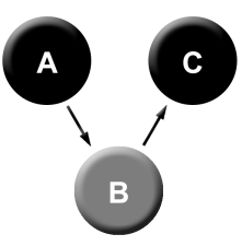 A>B>C with observed B