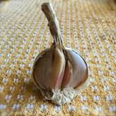 garlic half