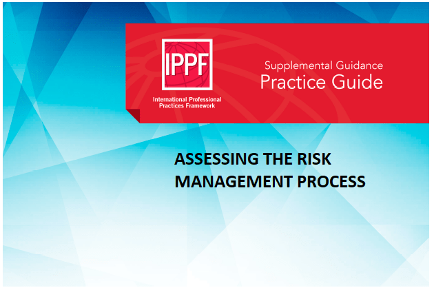 Is IIA secretly trying to kill risk management? Sometimes I wonder.