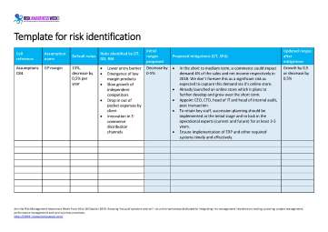 Template for risk identification