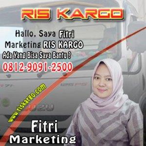 ris kargo marketing