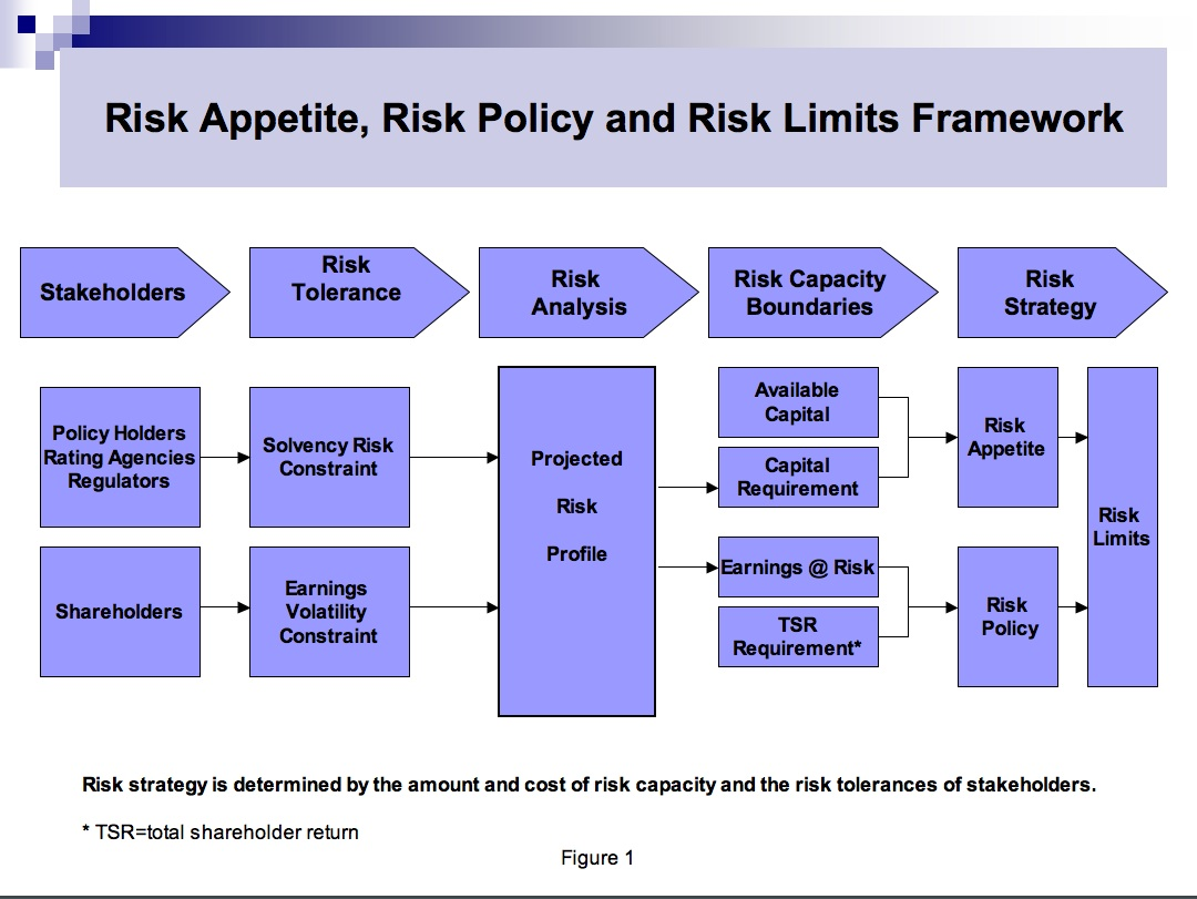 Integrating Risk Capacity And Business Strategy