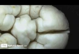 Phosphoric Acid Eating Away At Tooth Enamel