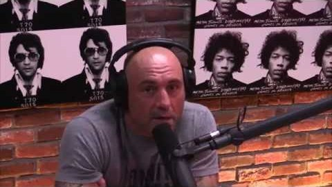 Rogan on Gun Control