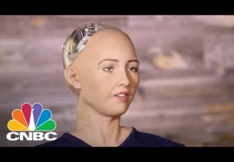 Humanlike Robot Wants To Destroy Humans – Huh?