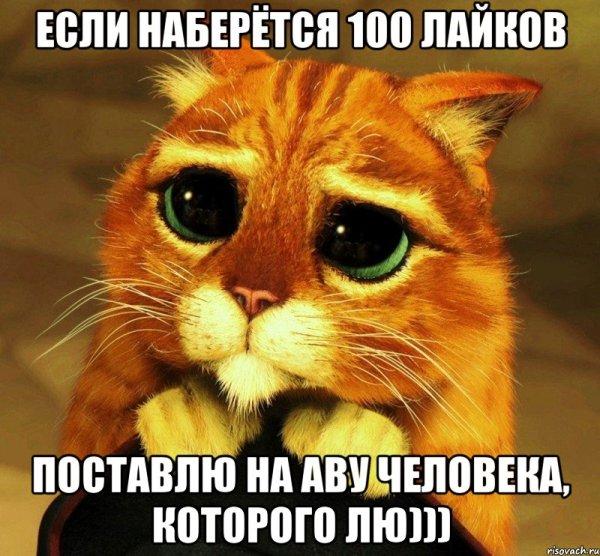 Мемы Кот из Шрека - Рисовач .Ру