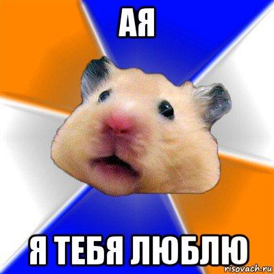 ая я тебя люблю, Мем Хомяк - Рисовач .Ру