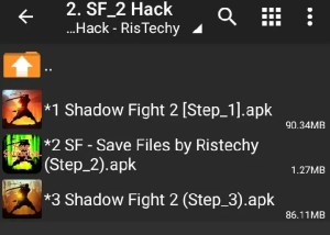 Shadow Fight 2 Mod Level 99 Files