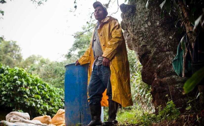 Sonora Red Honey – SÆSONKAFFE fra Costa Rica