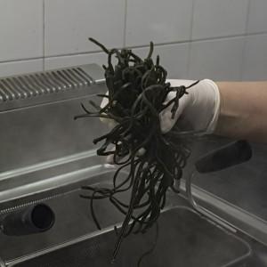 alga spirulina ricette