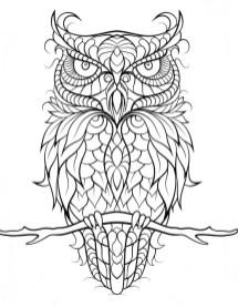 12.Раскраски антистресс совы
