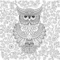 13.Раскраски антистресс совы