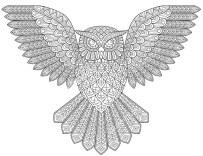14.Раскраски антистресс совы