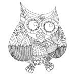 17.Раскраски антистресс совы