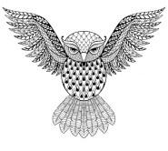 19.Раскраски антистресс совы