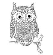07.Раскраски антистресс совы