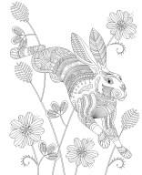 11.Раскраски антистресс животные