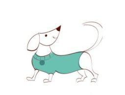 09.Рисунки животных для срисовки карандашом