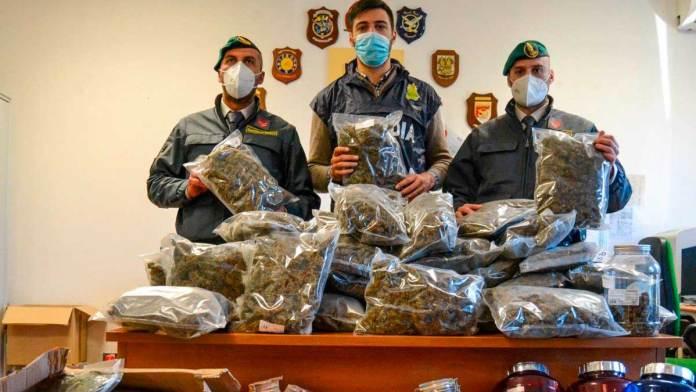 Gdf marijuana sequestrata