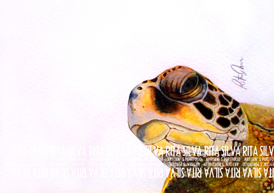 """Raphael"" Turtle Watercolor Artwork"