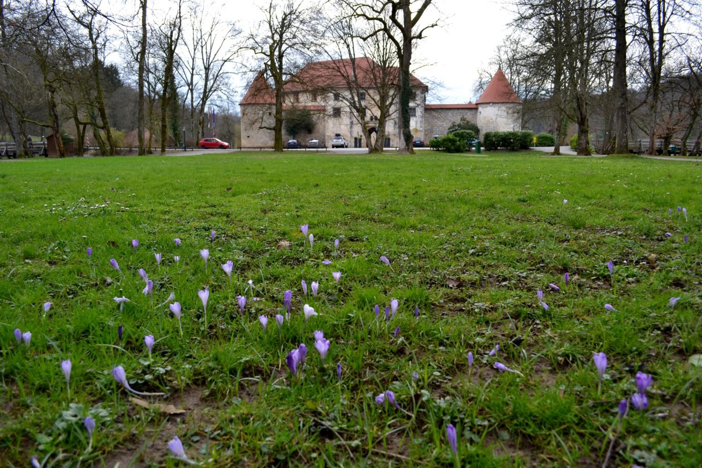 slovenia castelli da vedere