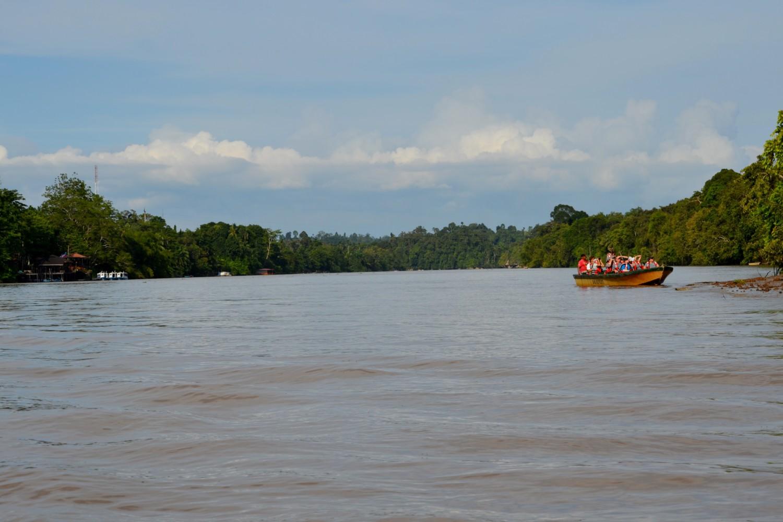 fiume kinabatangan borneo