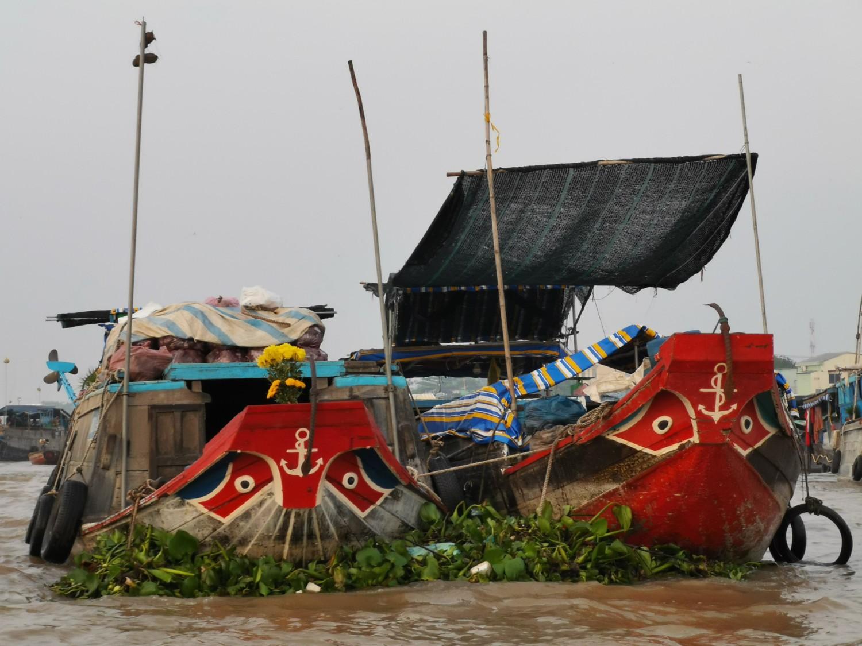 delta del mekong vietnam