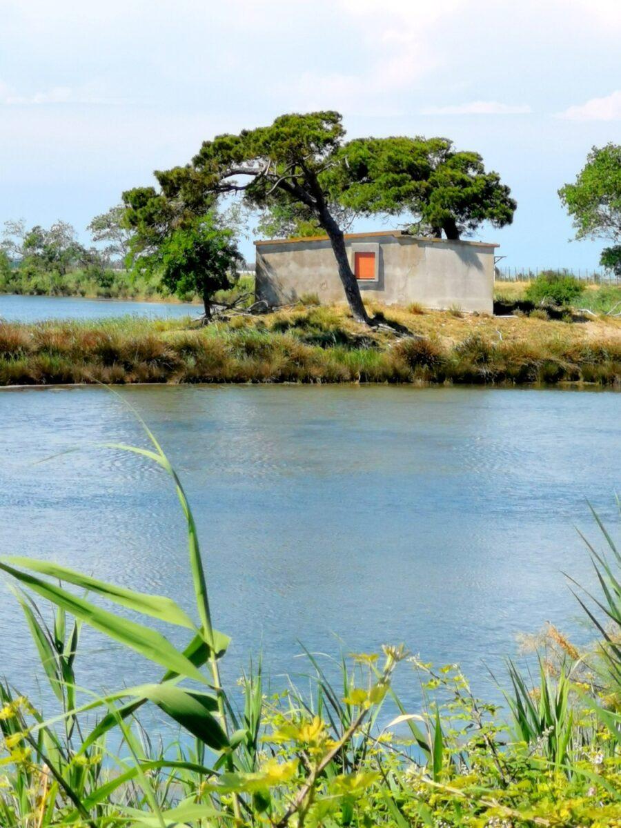 isola di albarealla delta del po