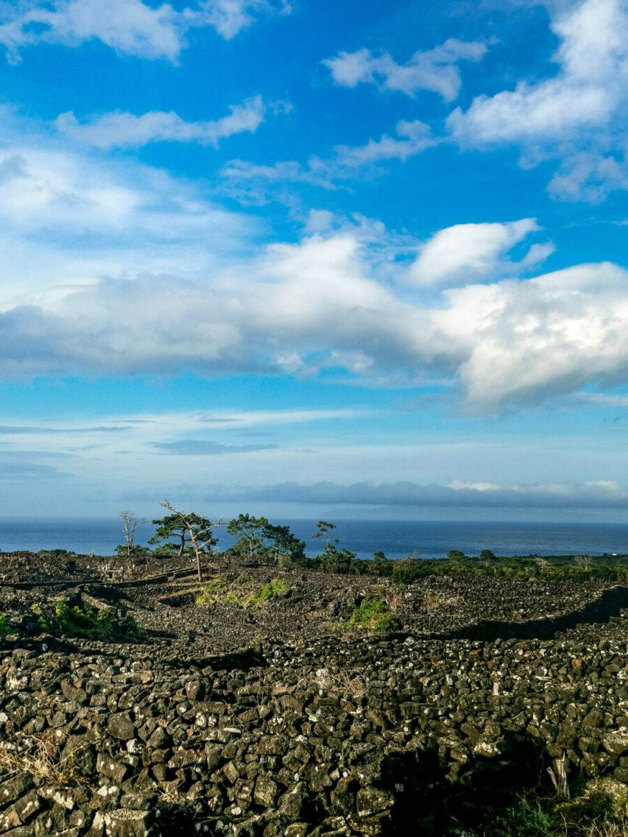 Tipico paesaggio dell'isola di Pico