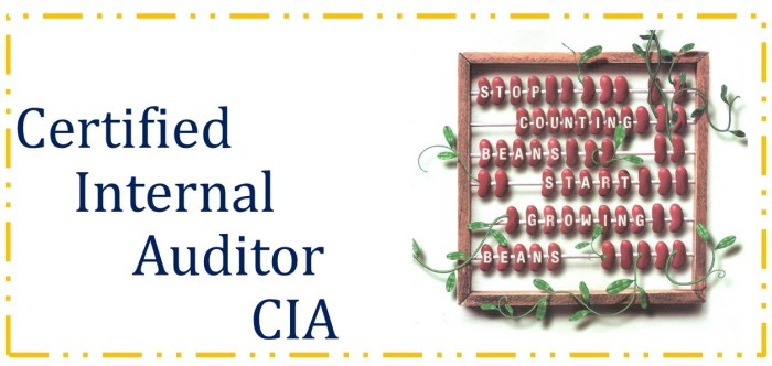 Certified Internal Auditor (CIA) - Parts I, II & III 30