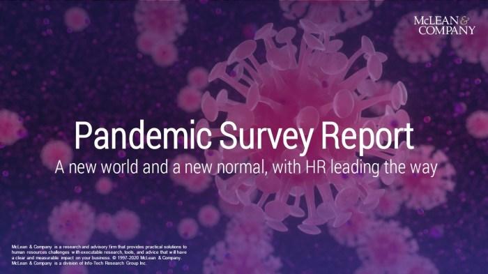 Pandemic Survey Report 3