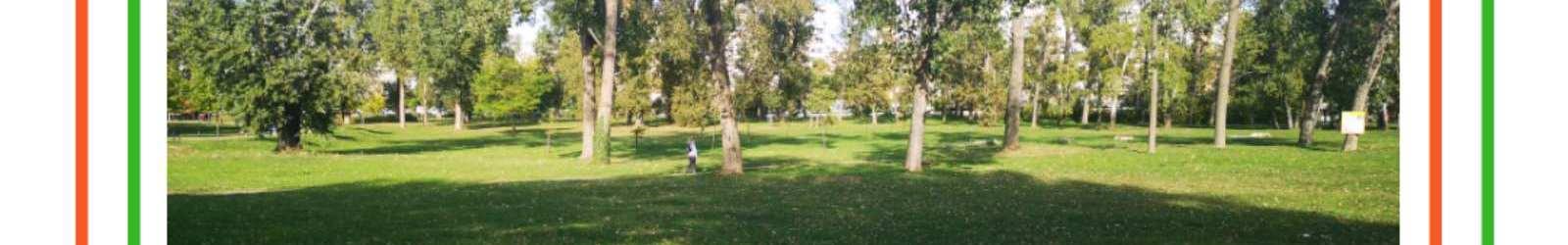 Razigrani piknik u Limanskom