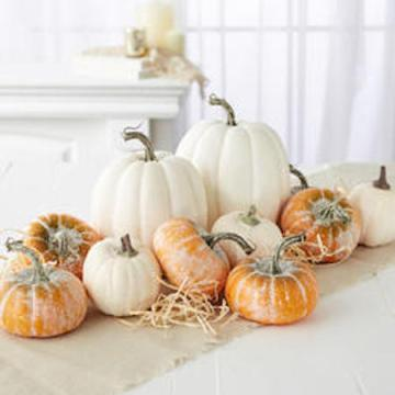 assorted_frosted_orange_and_harvest_white_artificial_pumpkins_medium.jpg