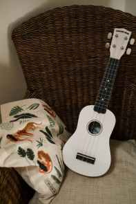 ukulele lessons play your own instruments fast rita slanina