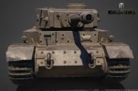 andrey-sarafanov-sarafanov-tigerp-11