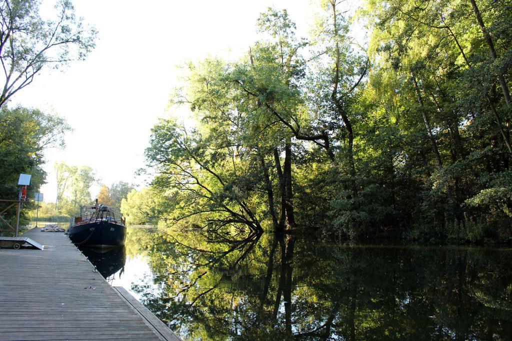 """Bäume spiegeln sich im unbewegten Wasser am Liegeplatz """"Quadrat"""""""