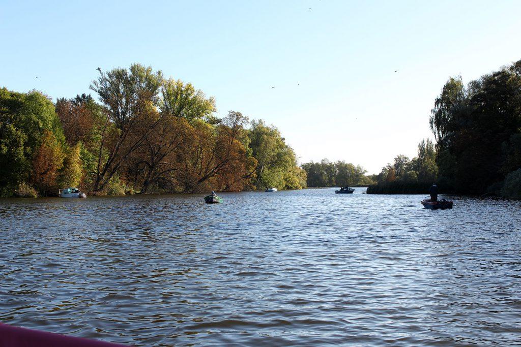 Angler in kleinen Booten auf der Oder bei Stettin