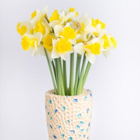Narcizai vazoje
