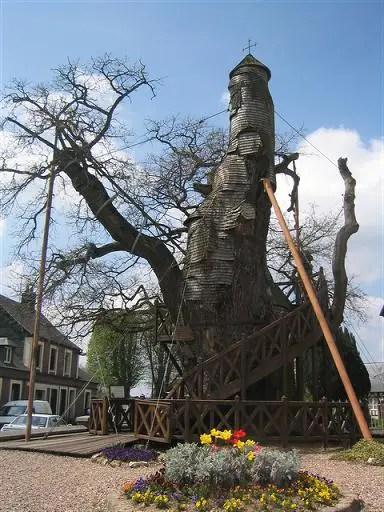 Oak Chappel  at allouville bellefosse