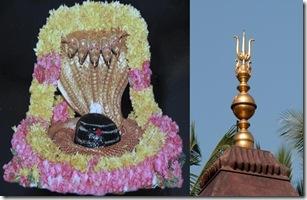 Mallikarjuna Shivlinga