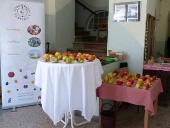Apfelfest für Jung und Alt