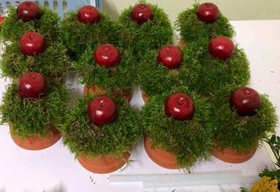 Hortensienbinden für das Apfelfest